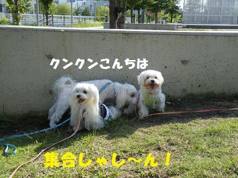 2008_10090059.jpg