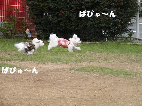 2008_10180048.jpg