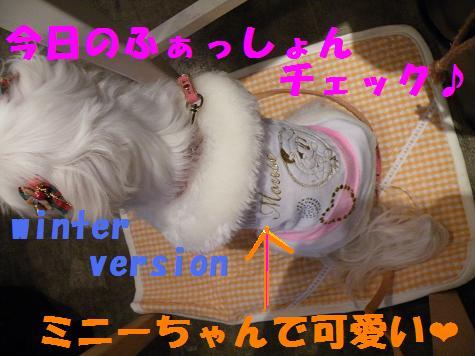 2008_12090015_20081210175647.jpg