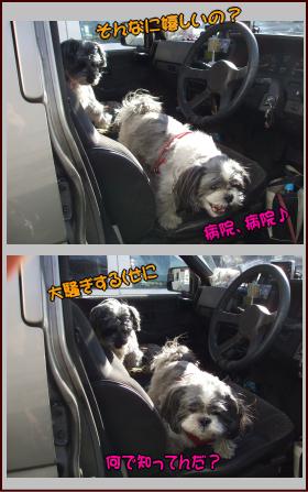 車から降りる