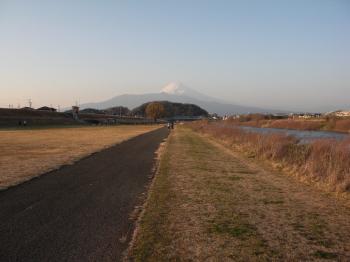 狩野川運動公園から富士山