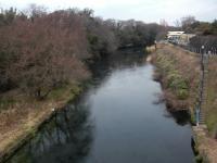 さいごはこ~んな大きな川