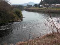 狩野川にそそぎます