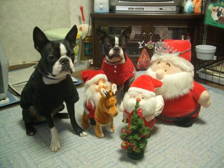 めり~クリスマス