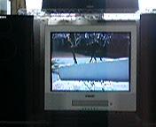 20050813115408