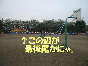 CIMG0320.jpg