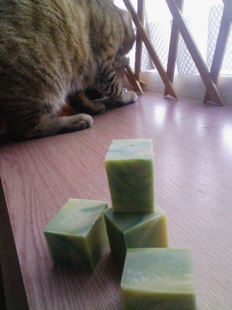 緑茶&クレイ2