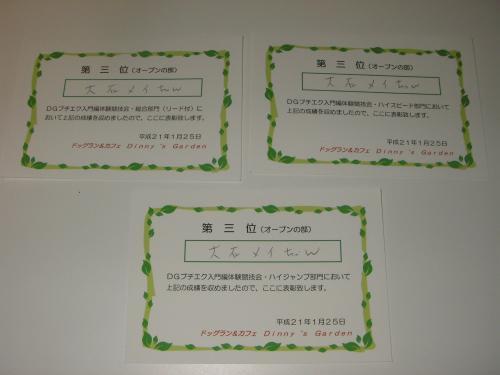 P1250095_convert_20090126174015.jpg