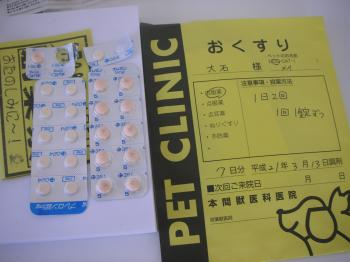 P3140009_convert_20090317083050.jpg