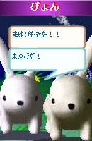 070703pyonchan2.jpg