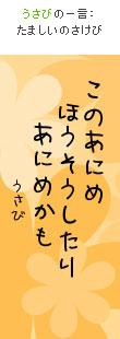 070723tanzaku2.jpg