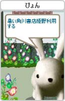 070801pyonchan4.jpg