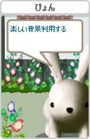 070801pyonchan5.jpg