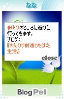 070805blogpet1.jpg