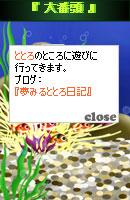 070806blogpet16.jpg