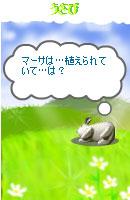 070921blogpet4.jpg