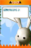 071029usabi7.jpg