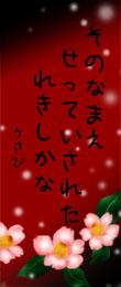 080114tanzaku3.jpg