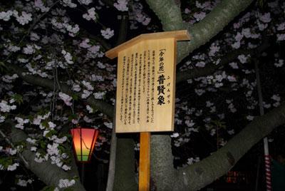 080423zouheikyoku9.jpg