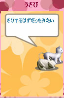 080512usabi12.jpg