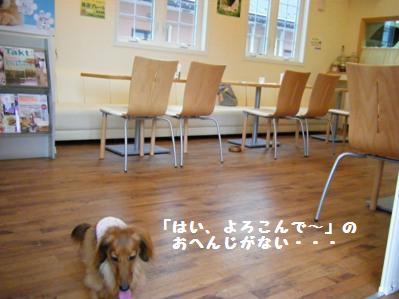 勝手に居酒屋扱い、店長さんスミマセン(^^;)