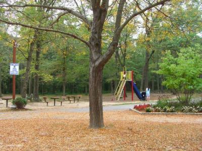 Veterans Park 3