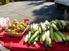 Farm Market2