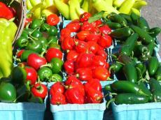 Farm Market12