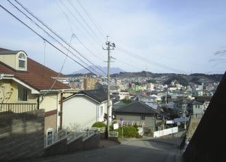 06 振り返ると桜島(29%)