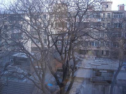 ホテルの窓より1129a