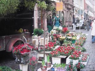 ドイツの花屋200812