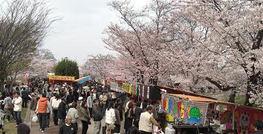 大和高田・大中公園0405c