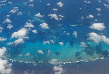 サンゴ礁 1