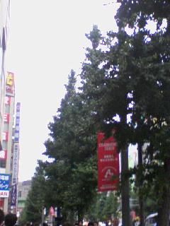 20081026143711
