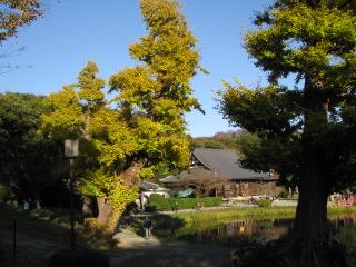 2009-11-23-10.jpg