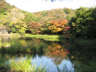 2009-11-23-2.jpg