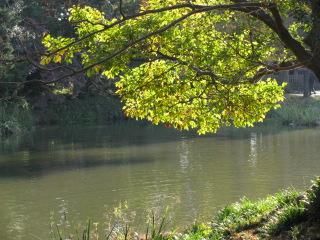 2009-11-23-7.jpg