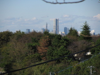 2009-11-3-1.jpg