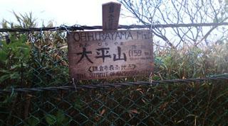⑩鎌倉最高地点