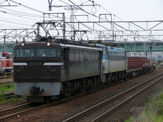 P1050020_s.jpg