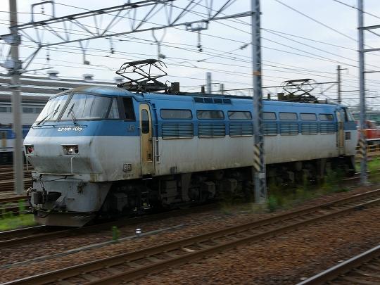 P1050140_s.jpg
