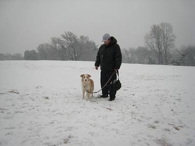 雪合戦!!