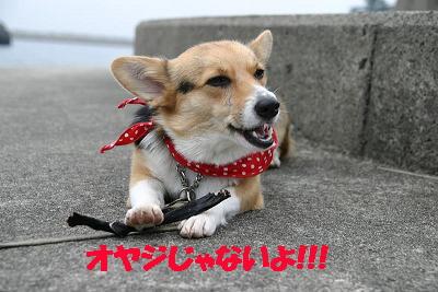 うんめなぁ~~~~