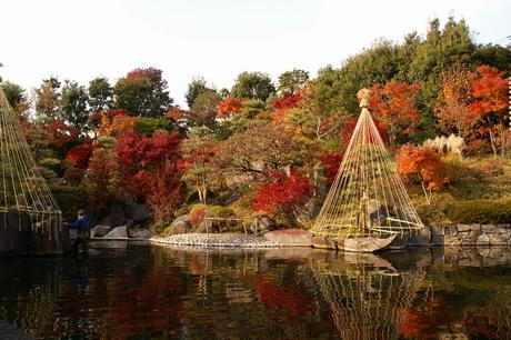 目白庭園紅葉2