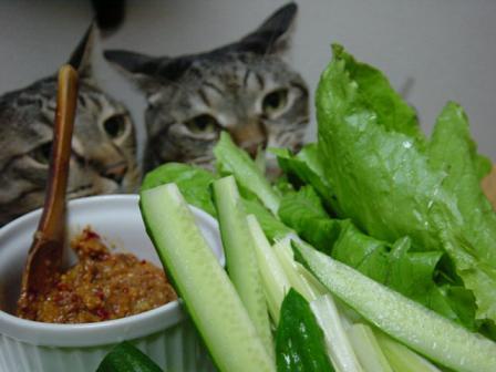 野菜が気になる二人