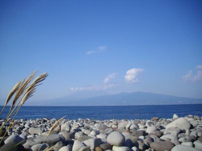 大瀬崎からの富士