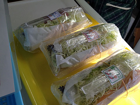tacos5.jpg