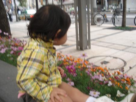 fuuwako.jpg