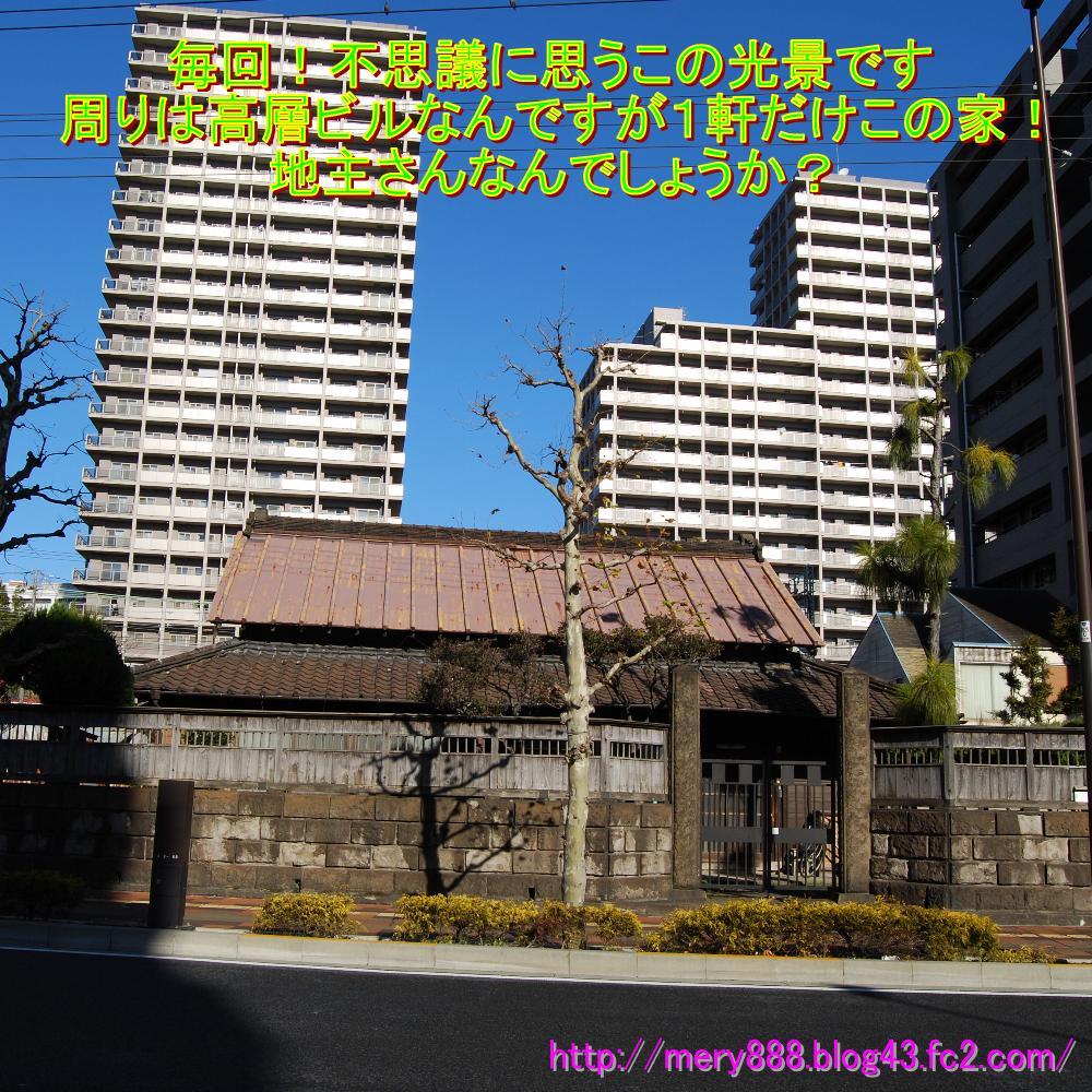 東京湾岸をもぐる003