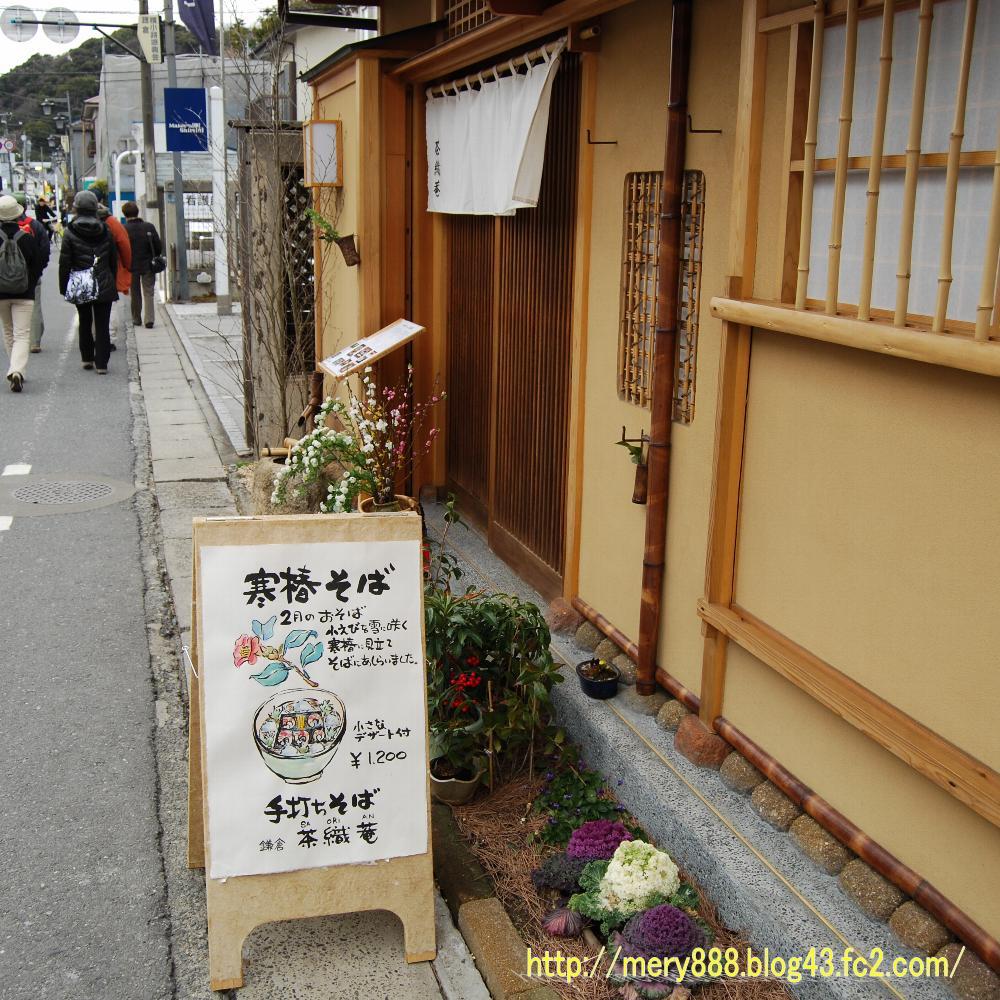 鎌倉悪猫002